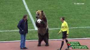 News video: Performing bear at Russian soccer match causes outrage