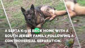 News video: SEPTA K-9 Reunited With Family Following Controversial Separation