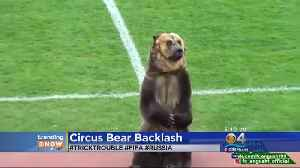 News video: TRENDING: Some Upset After Circus Bear Used To Help Start Soccer Game In Russia