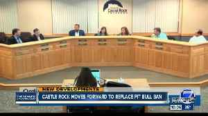 News video: Repeal of pit bull ban in Castle Rock clears first hurdle in Town Council vote