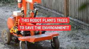 News video: Tree planting robot
