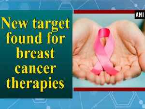 News video: New target found for breast cancer therapies