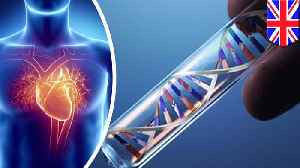 News video: Genes behind fatal heart condition identified by scientists