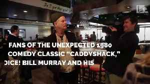 News video: Attention 'Caddyshack' Fans: Bill Murray & Brothers Just Opened Restaurant You've Been Waiting For
