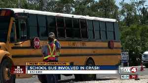 News video: Woman dead after driving into the path of a school bus