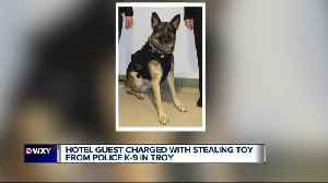 News video: Man accused of stealing Troy Police K-9's dog toy during training