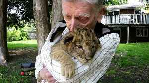 News video: Decorated war hero's emotional cuddle with lions & cubs