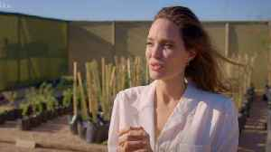 News video: Angelina Jolie Flies Plane Over Namibia