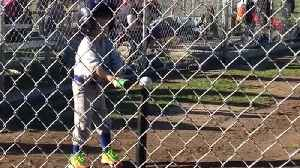 "News video: ""A tot boy hits a ball off of a tee with his hands during a tee ball game"""