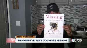 News video: Man shot twice when his dog went missing
