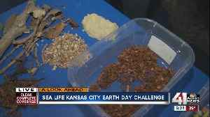 News video: Sea Life Science Challenge this weekend