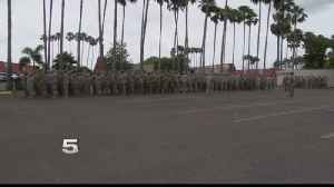 News video: National Guard Soldiers Briefed by Border Patrol in Donna