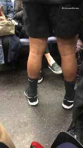 News video: Man wears jacket and shorts on subway