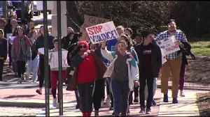 News video: VIDEO Lehigh Valley students take part in National School Walkout