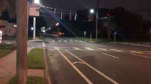 News video: Search for driver in hit-and-run in South Tampa| Digital Short