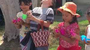 News video: Easter Gender Reveal: No More Sisters For This Boy Please