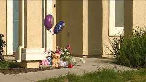 News video: California Mother Killed Two Young Sons, Then Herself, Police Say