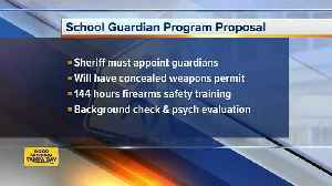 News video: Polk County School Board may vote on plan to use armed guards to secure schools