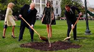 News video: President Trump Gets Bashed On Social Media For Planting A Tree