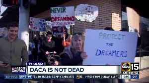 News video: Judge rules against ending DACA program to protect Dreamers