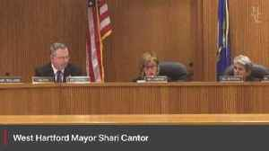 News video: West Hartford Mayor Shari Cantor talks about the need to adapt to change