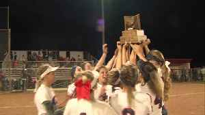 News video: THN wins Softball Glove Trophy for second year in a row