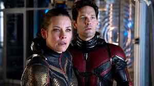 News video: Ant-Man and The Wasp - Official New Trailer