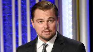 News video: Newly Discovered Beetle Species Named After Leonardo DiCaprio
