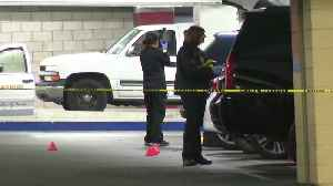 News video: Shoppers Make Gruesome Discovery Inside Car Parked at California Mall