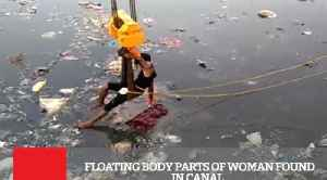 Floating Body Parts Of Woman Found In Canal
