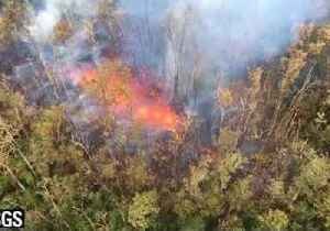 News video: Lava Bursts 'High as Tree Tops' From New Fissure in Eruption-Hit Hawaii District