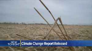News video: California Sees Success Against Climate Change, But More Still Needed