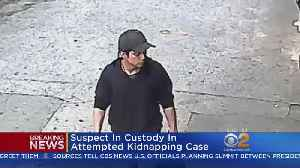 News video: Suspect In Custody In Attempted Kidnapping Case