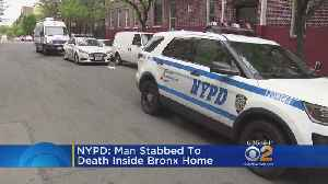 News video: NYPD: Man Stabbed To Death Inside Bronx Home