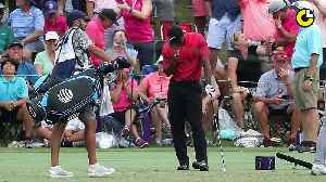 News video: Tiger Woods' wild week at the Players Championship