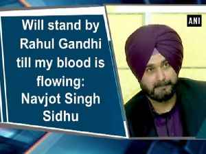 News video: Will stand by Rahul Gandhi till my blood is flowing: Navjot Singh Sidhu