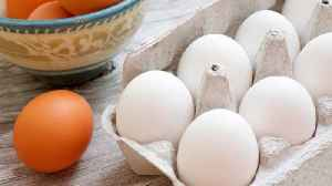 What you need to know about the massive egg recall [Video]
