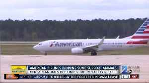 News video: American Airlines no longer allowing certain emotional support animals on flights