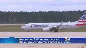 News video: American Airlines Bans Insects, Hedgehogs & Goats As Emotional Support Animals