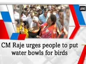 News video: CM Raje urges people to put water bowls for birds