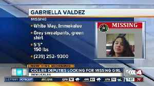 Collier County Girl Missing