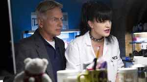 News video: Pauley Perrette Left 'NCIS' After 'Physical Assaults' — CBS Responds