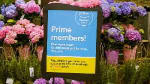 News video: Here's Why Groceries Just Got Cheaper For Amazon Prime Members