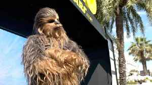 News video: Chewbacca Surprises Cannes For 'Solo: A Star Wars Story' Premiere