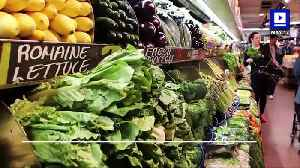 News video: CDC Says Romaine Lettuce is Safe to Eat Again