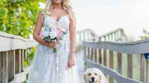 News video: Pesky poo-ch! Canine flower girl photobombs romantic sunset beach wedding by pooping in background