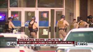News video: Person with gun causes scare at Las Vegas Mall