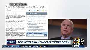 News video: GOP voters want McCain to step down