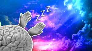 News video: This Is What Happens To Your Body When You Don't Sleep