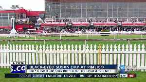News video: It's all about the ladies for Black-Eyed Susan Day at the Pimlico